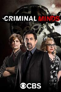 Criminal Minds seasons 1-14 DVD Set